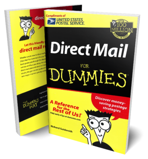 direct mail for dummies book mockup